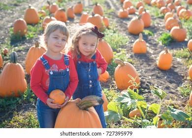 Happy girls standing near big pumpkin at farm field patch
