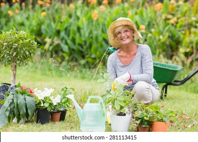 Happy grandmother gardening on a sunny day