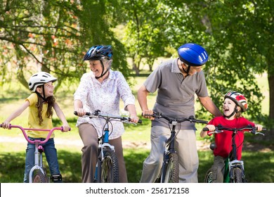 Happy grandparents with their grandchildren on their bike on a sunny day