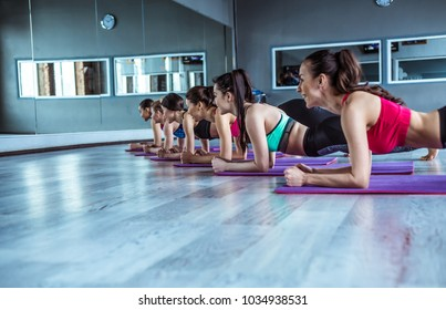 Happy group of young beautiful women in sportswear doing yoga exercises in plank position. Class of yoga or fitness
