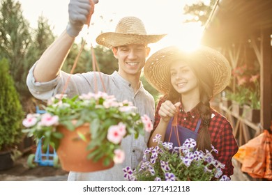 Happy guy and girl gardeners in a straw hats hold pots with wonderful petunia in the garden on a sunshine