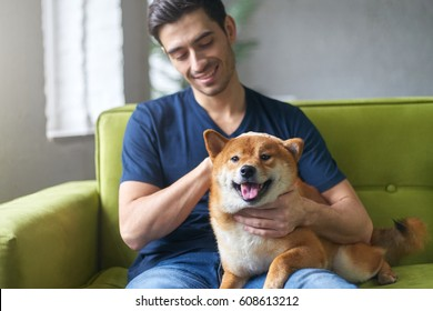 Happy guy petting dog sitting on green sofa in room of loft appartment. Close friendship betwween young atrractive man and cute Shiba inu dog. Owner having fun with pet concept