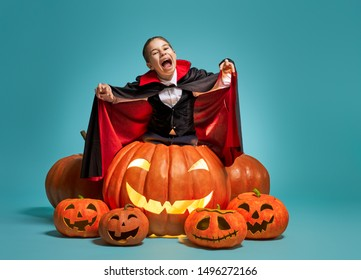 Happy Halloween! Cute little Dracula with  pumpkins on turquoise background.