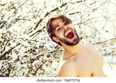 happy handsome bearded young man or sexy muscular guy with bare torso and chest on fit body in winter sunny outdoor in trees with snow on natural background