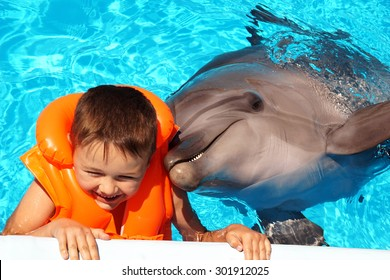 Happy handsome little boy laughing and swimming with dolphin in the blue swimming pool. Portrait of a dolphin and a little boy in an orange vest closeup