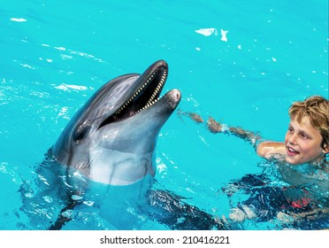 Happy handsome young boy laughing and swimming with dolphins in the blue swimming pool on a bright sunny day on the occupation of the dolphin