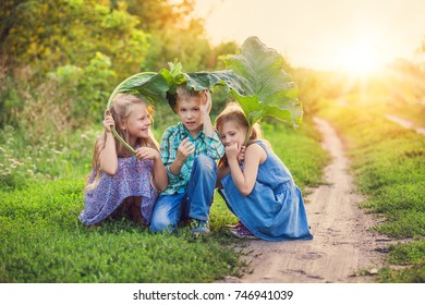 Happy Children's hiding under a big green leaf from small summer rain over sunset at countryside