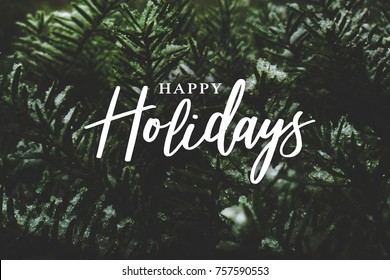 Happy Holidays Text Over Winter Evergreen Branches Covered in Snow