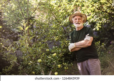 Happy horticulturist in flaxen hat with folded arms resting after work. Copy space in left side