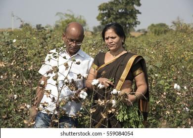 Happy Indian Farmer in a cotton field, Maharashtra, India.