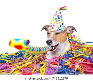 happy jack russell dog having a party with serpentine streamers, for  new years eve and blowing a whistle horn
