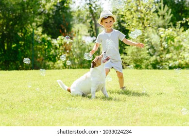 Happy kid and pet dog playing with soap bubbles at backyard lawn