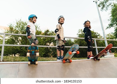 Happy kids on skateboards at the ramp, ready to ride down the ramp