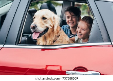 happy kids sitting on backseats in car with dog