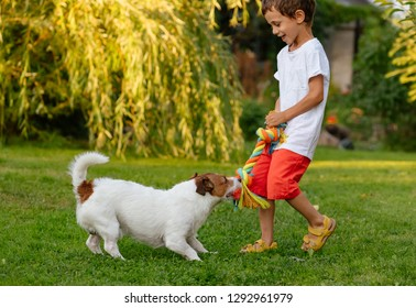 Happy laughing kid boy playing with his dog pulling doggy cotton rope toy