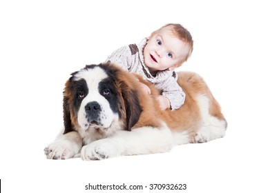 Happy little boy playing with a saint bernard puppy