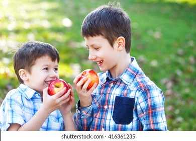 Happy little caucasian brothers eating apple outdoor