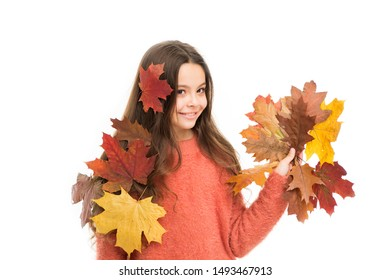 happy little child isolated on white. girl with maple leaf. smiling girl in autumn sweater. weather forecast. fallen leaves in autumn nature beauty. school season. warm clothes fashion. hair care.
