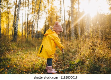 Happy little child in the raincoat of a dragon walking in the autumn forest collecting mushrooms