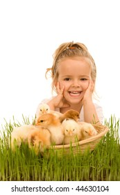 Happy little girl with a basket full of small chickens - isolated