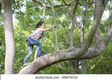 Happy Little Girl klettert auf einen Baum