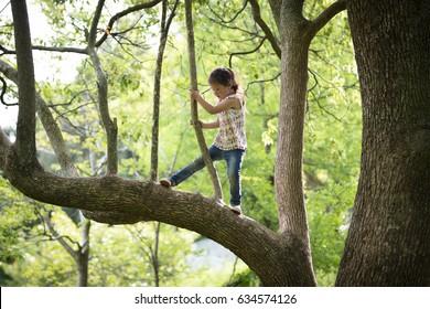 Happy Little Girl climbing a tree