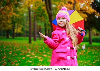 happy little girl with a colorful umbrella outdoor in the autumn park