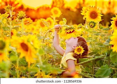 happy little girl having fun among blooming sunflowers under the gentle rays of the sun