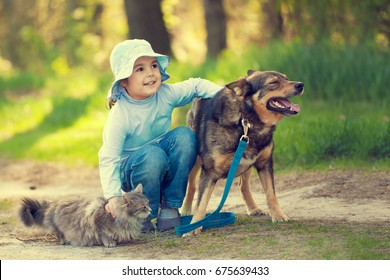 Happy little girl hugging dog and cat outdoors in forest in summer