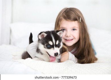 Happy Little girl lying on a bed and hugging with the puppy husky dog