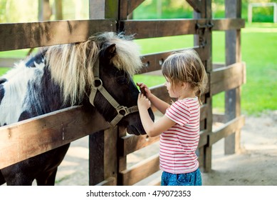 Happy little girl petting a pony through a wooden fence
