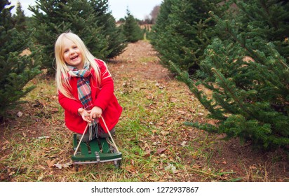 Happy little girl sitting on toboggan among fir trees. Cute girl wearing red coat and scarf looking at camera and smiling in winter
