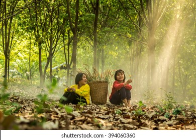 Happy little girls sitting on dry leaves in a forest with grass flower in hand. Nong Khai, Thailand.