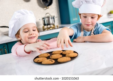 happy little kids in chef hats eating tasty cookies in kitchen
