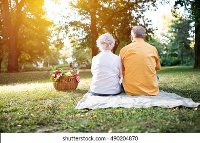 Happy and lovely senior couple enjoying a picnic in the park