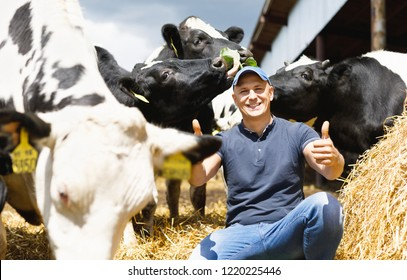 happy male farmer on cow farm around herd