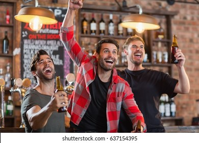 Happy male friends cheering while holding beer bottles in bar