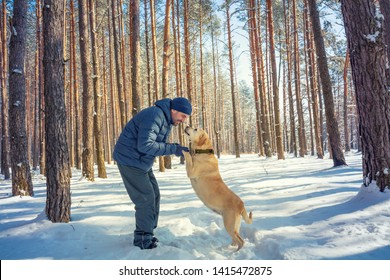 Happy Man with dog on a leash walking on snowy pine forest in winter