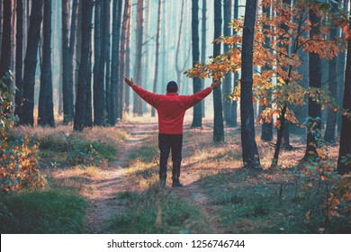 A happy man with hands in the air standing in the country road in the forest in early morning