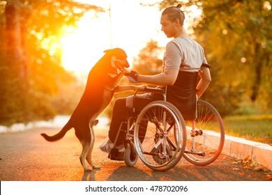 Fröhlicher Mann mit seinem Hund bei Sonnenuntergang. Ein Mann im Rollstuhl.