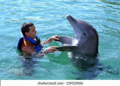 happy man swim with dolphin in dolphinarium