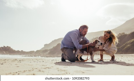 Happy mature couple caresses their pet dog on the beach. Senior man and woman on the sea shore with their pet dog in morning.