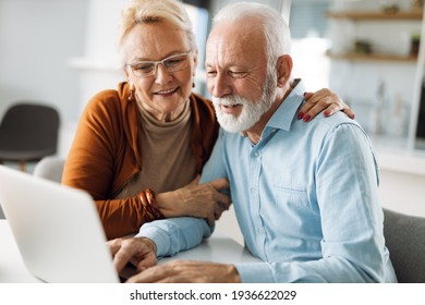 Happy  mature couple using  laptop at home