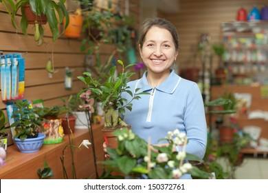 Happy mature woman chooses Bonsai in pot at flower shop