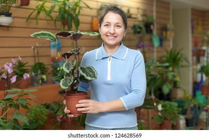 Happy mature woman chooses Calathea in pot at flower shop