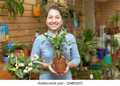 Happy mature woman chooses  ficus plant (Bonsai) in pot at flower shop