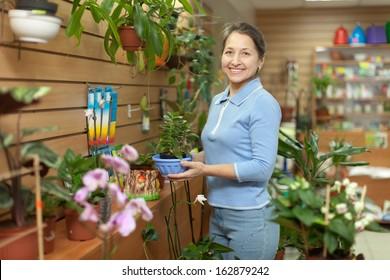 Happy mature woman chooses Kalanchoe plant at flower shop