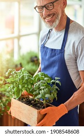 Happy middle aged caucasian man holding box with herbs