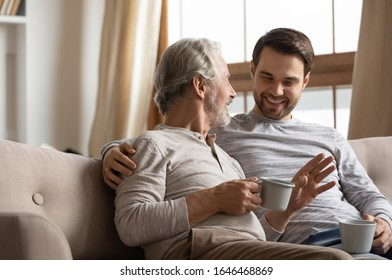 Happy middle aged grey haired man relaxing on cozy sofa with smiling grownup son, spending leisure weekend morning time with cup of coffee tea. Joyful two generations family talking sharing news.