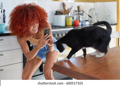 Happy mixed race woman taking a photo picture with her mobile cell phone of her pet cat at home kitchen